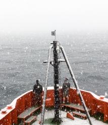 LH-palmer-whalewatchers-IMG_1575